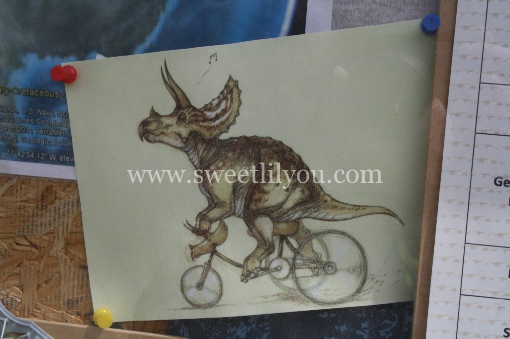 triceratops on a tricycle
