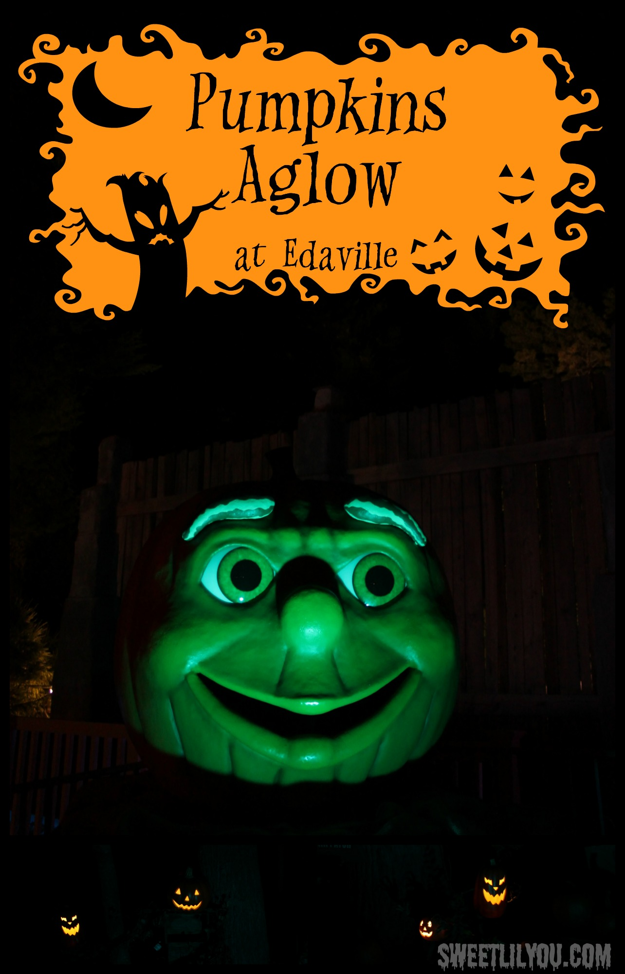 Pumpkins Aglow at Edaville USA this October