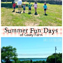 Summer Fun Days - Farm Camp - Casey Farm