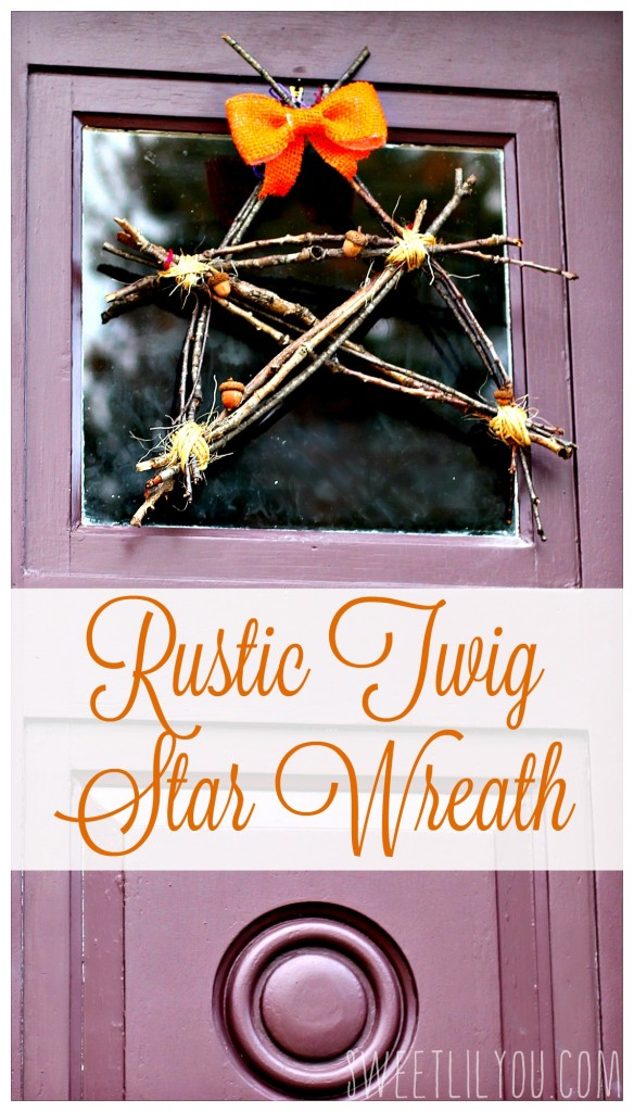 Rustic Twig Star Wreath