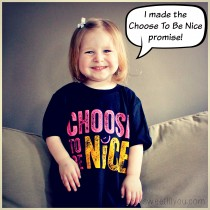 Choose to be nice promise