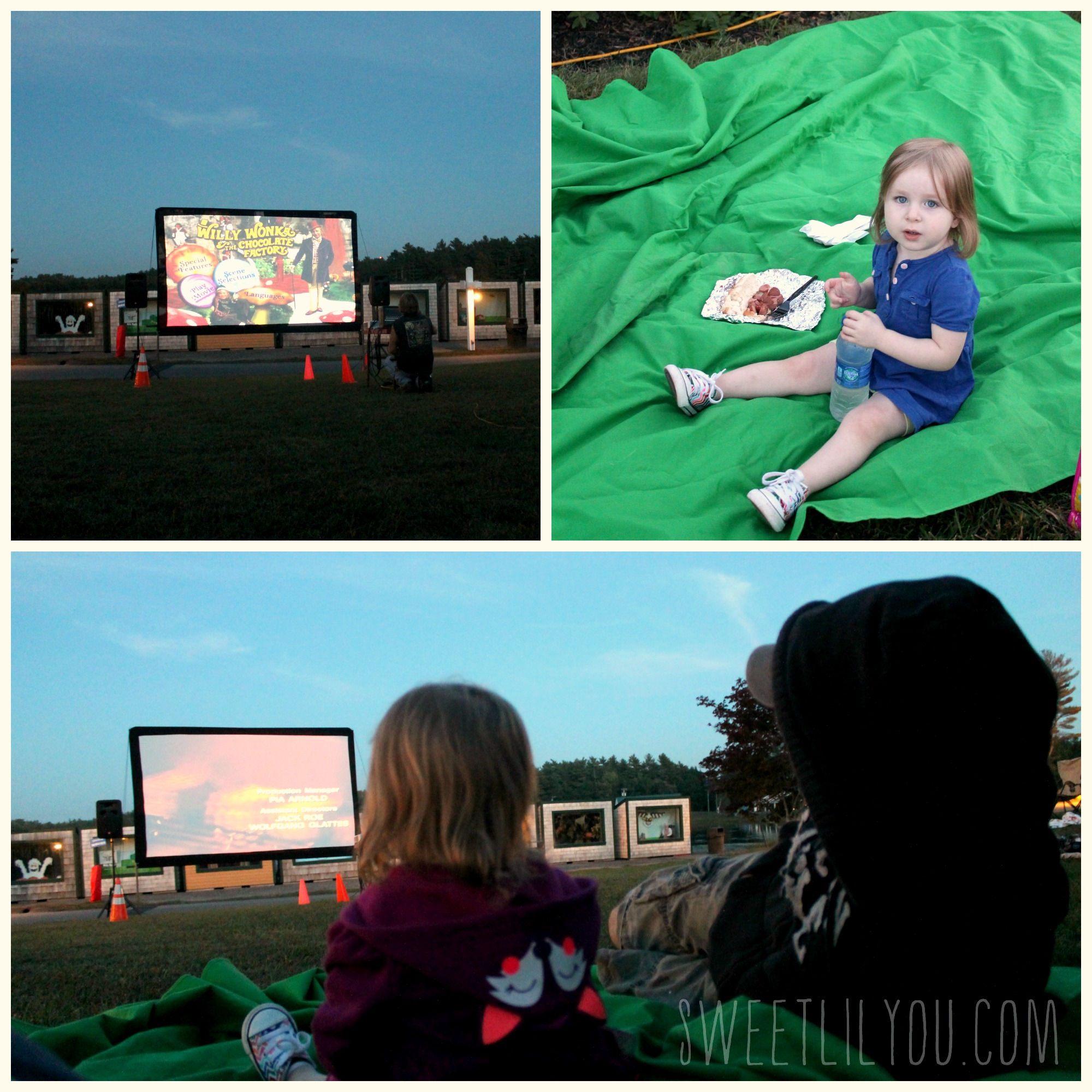 Movie Night Edaville Picnic