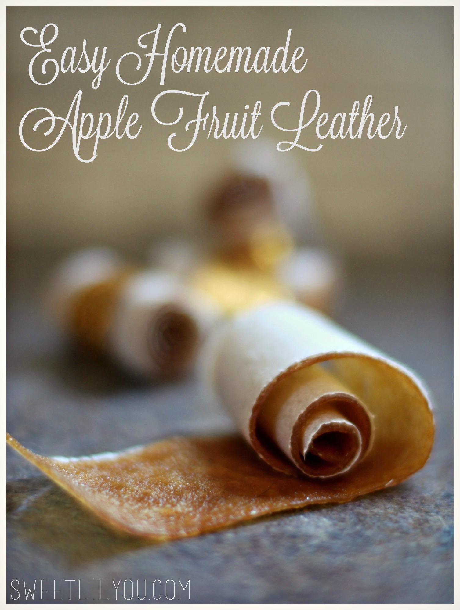 Easy Homemade Apple Fruit Leather