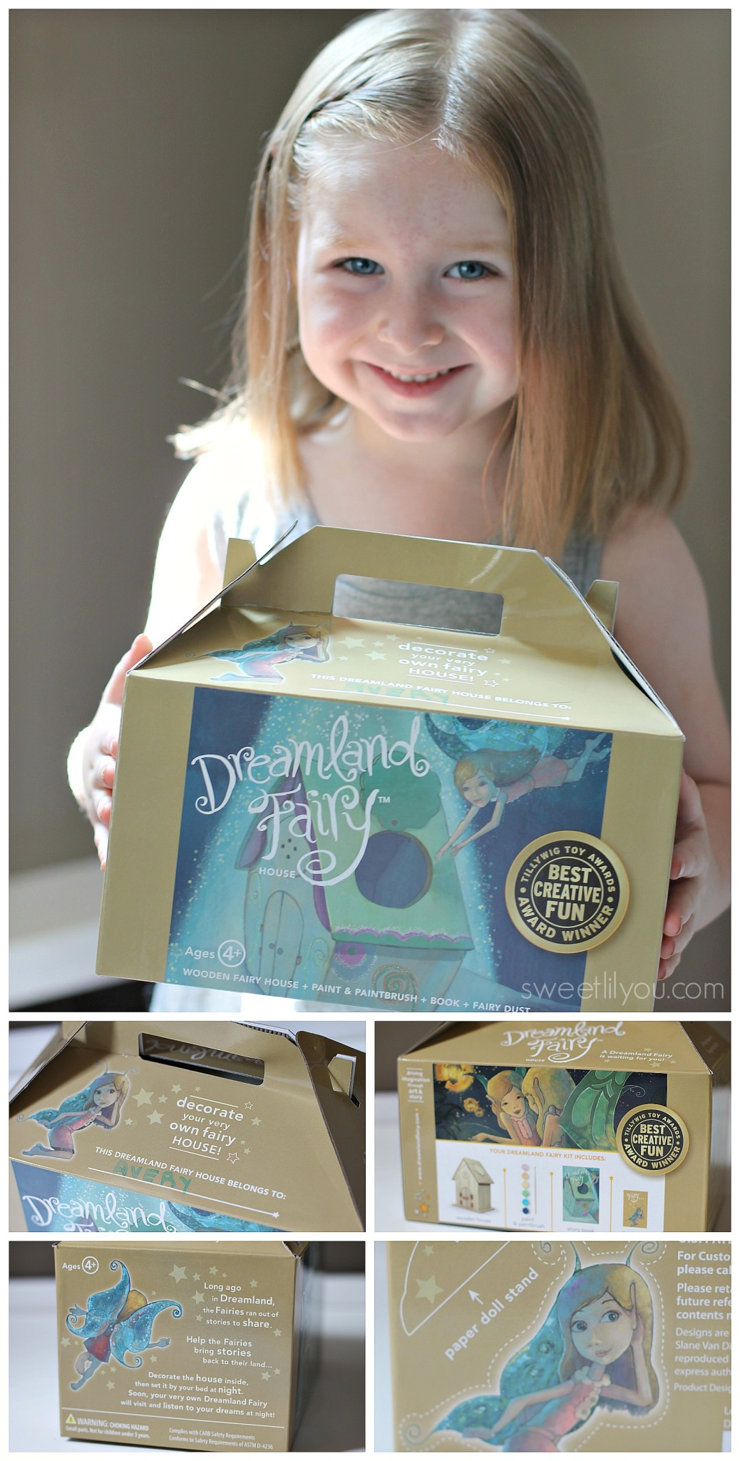 dreamland-fairy-kit