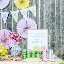 Lemonade Stand Party sweetlilyou FB