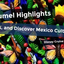 Cozumel Highlights